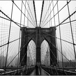 Qui n'aime pas NYC ? La Grande Pomme au goût amer
