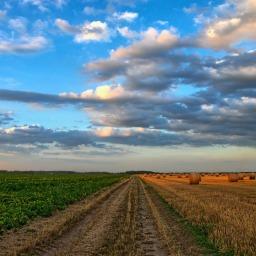 GIEC : un nouveau rapport alarmant sur l'état de notre système alimentaire